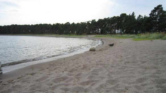 Norra Sandö:n itäpuolen iso hiekkaranta.